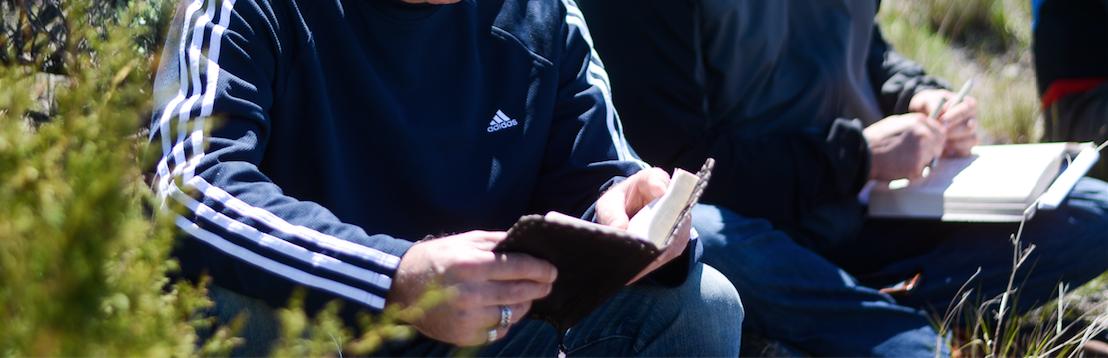 disciple bible